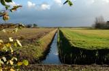 Texel (de Koog)