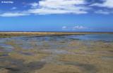 3386b-devodara-beach.jpg