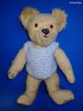 PA290536 vintage bear