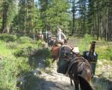 2017 Pasayten Wilderness Volunteer Work