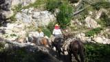 Andrew Ck Trail #504.jpg