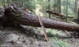 Jordan Creek Trail - Before