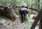 Jordan Creek Trail - After