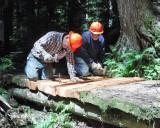 Packwood Lake Repairs