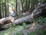 Jordan Creek Trail -  During