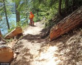Packwood Lake Trail After