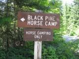 1 - Black Pine Horse Camp.JPG