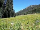 65 - Meadow Creek.jpg