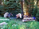 99 c - trail crew camp.jpg