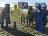 3 - Costume Contest.jpg