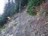 Trail #220 Strawberry Mountain DSCF1002.jpg