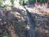 Trail #220 Strawberry Mountain DSCF1007.jpg