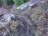 Trail #220 Strawberry Mountain DSCF1010.jpg