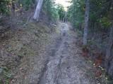 Green River Trail #213 DSCF1013.jpg
