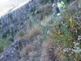 Green River Trail #213 DSCF1014.jpg