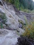 Green River Trail #213 DSCF1022.jpg