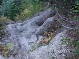 Green River Trail #213 DSCF1024.jpg