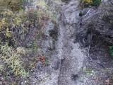 Green River Trail #213 DSCF1025.jpg