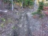 Green River Trail #213 DSCF1027.jpg