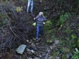 Green River Trail #213 DSCF1029.jpg