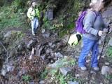 Green River Trail #213 DSCF1031.jpg