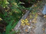 DGreen River Trail #213 SCF1034.jpg
