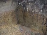 Green River Trail #213 DSCF1054.jpg