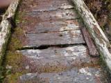 Green River Trail #213 DSCF1057.jpg