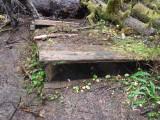Green River Trail #213 DSCF1076.jpg