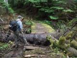 Green River Trail #213 DSCF1077.jpg