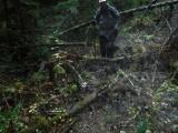 Green River Trail #213 DSCF1113.jpg