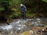 Green River Trail #213 DSCF1138.jpg