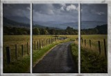 triptych_images