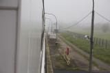 More mist (well rain)