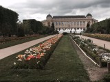 jardin_des_plantes_