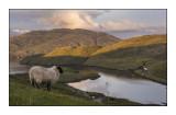 Loch Maaruig, Harris