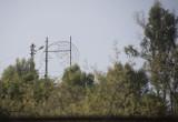 Anamur Street View 5602.jpg