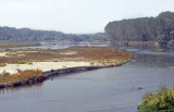 Edirne River 008.jpg