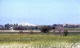 Milete 99 001.jpg