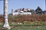 Selcuk Artemis temple 92 005.jpg