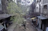 Istanbul Han Roof 032.jpg