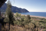 Dalyan view of eastern beach 1b.jpg