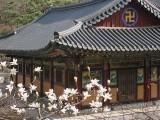Beautiful Korea II