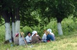 Field workers taking their lunch break in the shade