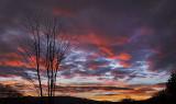 Sunrise #4567