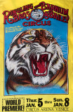 Bright Side of the Circus