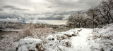 December Snowfall on the Rio Grande