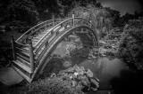 Japanese Garden Bridge #1