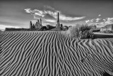 B&W Dune Textures