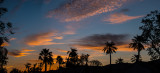 Indio Sunrise